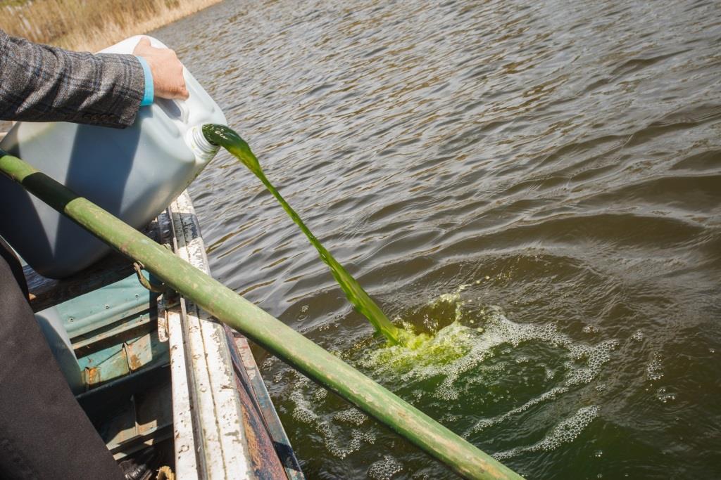 Альтернативные методы очистки водоемов