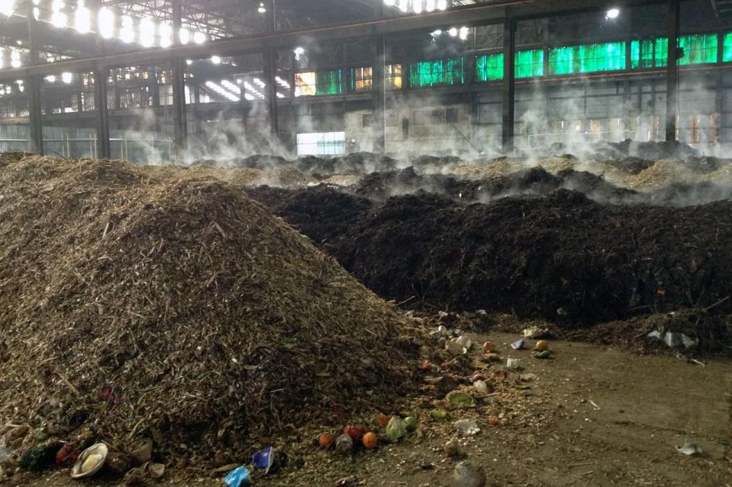 Как правильно собирать и перерабатывать органику